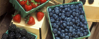 Enjoy fresh produce from Quebec!
